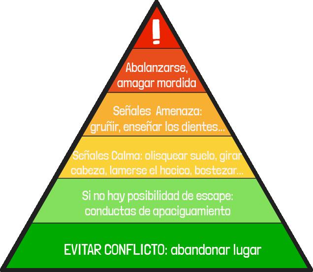 Piramide Escalada de Señales