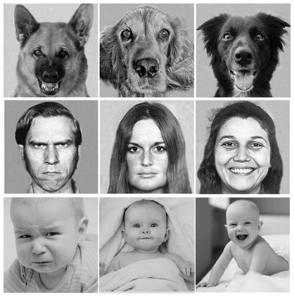 Emociones y expresiones faciales