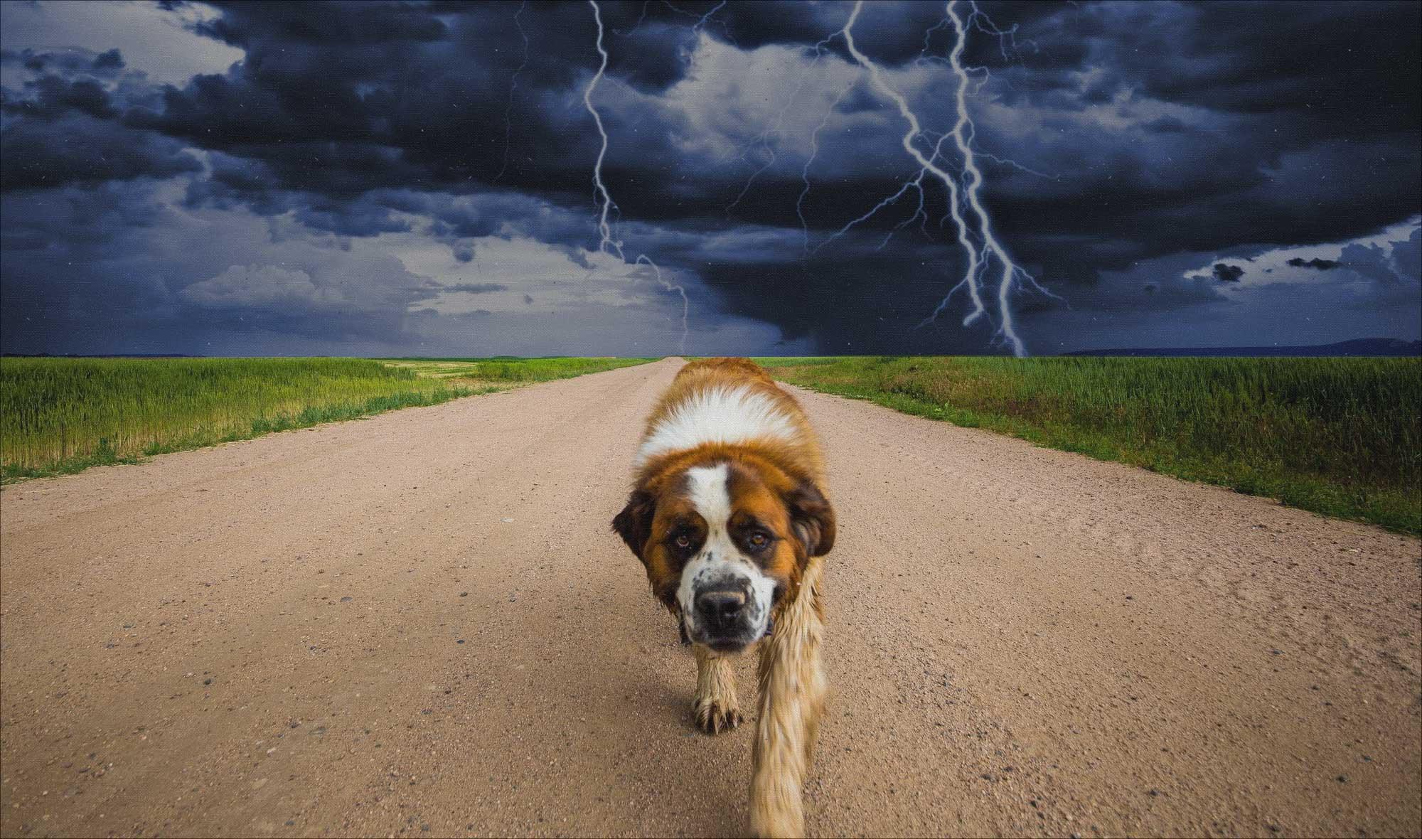 Fobia-tormentas-petardos